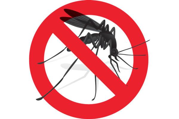 Disinfestazione contro le zanzare