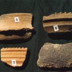 Frammenti di ceramica